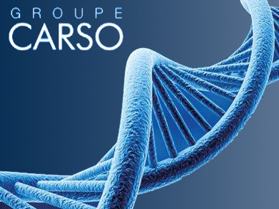 Groupe CARSO